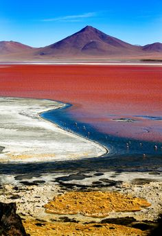 Laguna Colorada, Bolivia This shallow salt lake in southwestern Bolivia is bright red, due to pigments in the sediment and the presence of certain algae. Huge flocks of flamingos can be found wading in the shallows, and the center of the lake is dotted with bright white islands made entirely of borax.