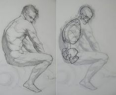 72 Best Anatomy - Male images in 2017 | Art tutorials, How