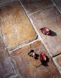 Exquisite Surfaces.  Parefeuille Peach Provenance: France Material: Antique Terra Cotta