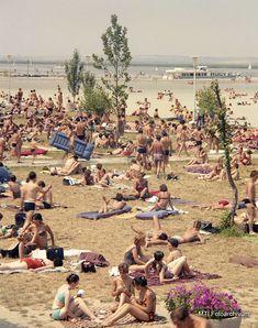 Retro, Dolores Park, Culture, Budapest, Travel, Poster, Viajes, Destinations, Traveling