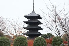 Toji Temple #Kyoto #Japan #JapanWeek Subscribe today to our newsletter for a chance to win a trip to Japan http://japanweek.us/news  Like us on Facebook: https://www.facebook.com/JapanWeekNY