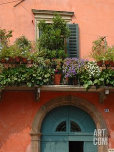 Balcony Garden in Historic Town Center, Verona, Italy Photographic Print by Lisa S. Engelbrecht at Art.com