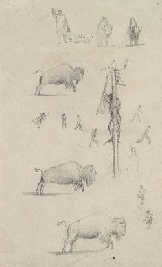 "A sketch depicting Plains buffalo, a subject Paul Kane was quite taken with and produced in many of his oil paintings. ""Buffalo Hunt Studies,"" 1846, Royal Ontario Museum."