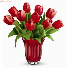 Kissed By Tulips Bouquet - Best Romantic Gift Ideas Forever Tickle her with tulips! This elegant bouquet of ten red tulips is arranged in a red-hot glass vase, featuring petal-like detailing. Flower Bouquet Pictures, Bouquet Images, Flower Images, Tulips In Vase, Purple Tulips, Tulips Flowers, Fresh Flowers, Flowers For Valentines Day, Mothers Day Flowers