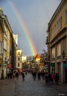 Tallinn (Estonia), 2 March 2017