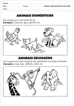 Teaching, Comics, Activities For Toddlers, Science Activities, Animal Science, Tame Animals, Printable Alphabet, Textbook, Science