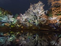 Kodaiji temple by Ryusuke Komori on 500px