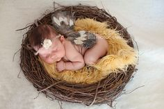 Kourtney | McPherson Kansas Newborn Photography » Lisa Stout Photography  newborn, baby, nest, wings