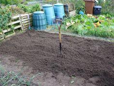 Five Ideas For Your Vertical Herb Garden – Handy Garden Wizard Easy Garden, Herb Garden, Garden Plants, Garden Ideas, Growing Herbs, Growing Vegetables, Home And Garden Store, Sensory Garden, Farmhouse Garden