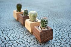 Boxcar Planters - single Walnut or Ash