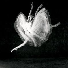 Ballerinas | ... instead delve into the Academy; aka FUTURE BALLERINAS OF THE WORLD