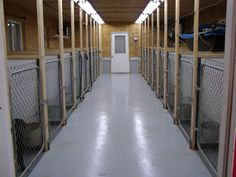 "dog kennel to build | ... Preparedness"" : The Blog: Notes on Building a Kennel or Kennel Complex"