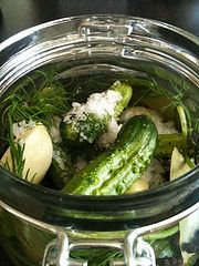 Paleo - Lacto Fermented Foods - Pickles, Saurkraut, etc. If you do it the Nourishing Traditions way it would include whey