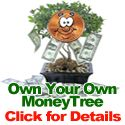 Own Your Own Money Tree - Click for Details