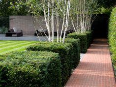 Wimbledon / garden design James Aldridge www.jamesaldridgedesign.com