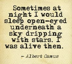 """sleep open-eyed underneath a sky dripping with stars"" -Albert Camus"