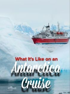 G Adventures Antarctica Classic Review | Flight of the Educator Antarctica Cruise, Drake Passage, Cruise Reviews, G Adventures, Group Tours, What Is Like, Where To Go, Kayaking, Adventure Travel