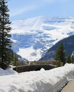 Now that's a lot of snow! And this was from June in the Canadian Rockies!