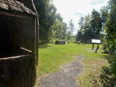Site archéologique, parc national des Îles-de-Boucherville, septembre 2016 Site Archéologique, Parc National, Activities, Plants, September, Plant, Planets