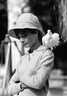 Audrey Hepburn with Dove, St. Tropez | From a unique collection of black and white photography at https://www.1stdibs.com/art/photography/black-white-photography/