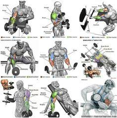 Mega Strong Biceps Workout