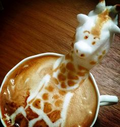 Giraffe 3D latte WOW! #coffee #harveyfresh #freerangemilk