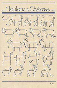 les animaux 19 | Flickr: partage de photos!