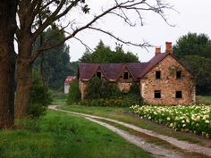 Ribbon Driveway by ChrisSmartvia Gardenista Old Stone Houses, Old Houses, Beautiful Homes, Beautiful Places, Tire Tracks, Home Security Alarm System, Welcome To My House, Abandoned Houses, Building A House