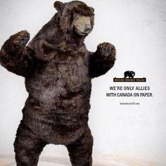 Bruins Bear Rules of Life