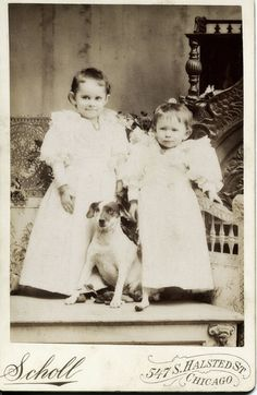 Adorable vintage cabinet photograph Victorian girls with puppy terrier dog 1890s in Collectibles, Photographic Images, Vintage & Antique (Pre-1940), Other Antique Photographs | eBay