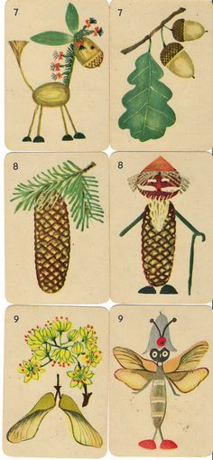 from a deck of cards illustrated by hanna krajnik
