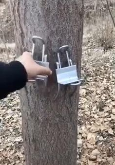 Slip Climbing Tree Shoes for Hunting Observation Picking Fruit Scratch) ?Non-slip tree climbing tool for collecting fruits,digging out birdhouses, observing and hunting,? Metal Projects, Welding Projects, Diy Welding, Homemade Tools, Diy Tools, Climbing Tools, Fruit Picking, Garden Design Plans, Metal Working Tools