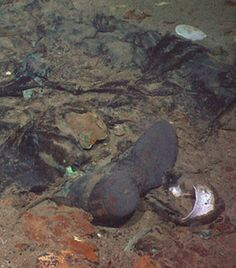 Image result for Titanic Wreck Bodies Human