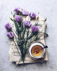 A new day, a new song. Book Aesthetic, Witch Aesthetic, Flower Aesthetic, Purple Aesthetic, Purple Tulips, Purple Love, Shades Of Purple, Have A Beautiful Day, Beautiful Flowers