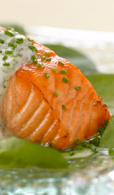 Saumon grillé avec sauce au yogourt aux herbes � Filets de saumon grillés recouverts de sauce au yogourt légère rehaussée de fines herbes et de jus de lime.