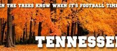 Even the trees know when it's football time in TN!! Vol Orange!