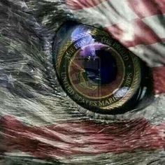 The Few The Proud United States Marine Corps Marine Love, Once A Marine, Marine Sister, F4 Phantom, Military Love, Military Humor, Military Quotes, Military Service, Us Marine Corps