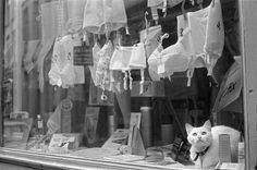 Henri Cartier-Bresson, Lille, France, 1968.