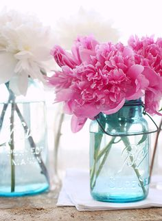 Gorgeous Peonies from a lovely new blog I found via A Creative Mint