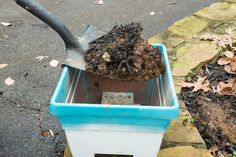 Using garden soil in your containers isn't a good idea.