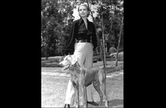 Grace Kelly And Weimaranter