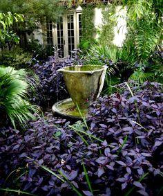 Chanticleer Teacup Garden