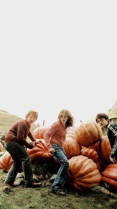 Harry Potter Trio, Arte Do Harry Potter, Harry Potter Icons, Harry Potter Tumblr, Harry Potter Pictures, Harry Potter Fandom, Harry Potter Characters, Harry Potter Hogwarts, Harry Ron Hermione