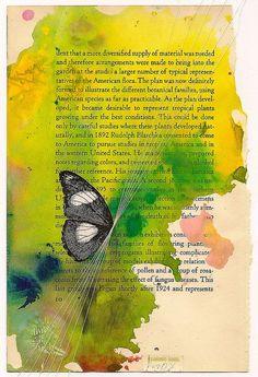Butterfly text piece