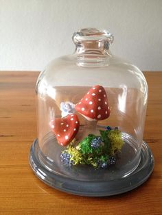 Fairy toadstool mini terrarium in the Gifts & Ornaments category was sold for on 28 Oct at by in Pietermaritzburg Mini Terrarium, Snow Globes, Fairy, Gifts, Stuff To Buy, Decor, Presents, Decoration, Favors