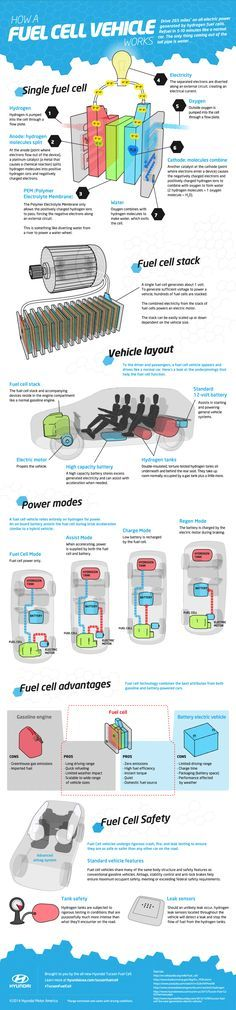 Infographic: How Does a Hydrogen Fuel Cell Work? - Gas 2