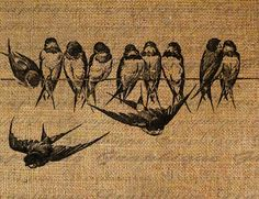 Digital Collage Sheet Burlap Iron On Bird Birds On A Wire Flying Digital Download Fabric Transfers To Pillows Totes Tea Towels 1720