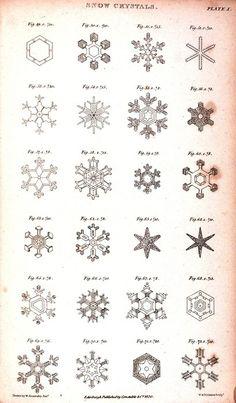 snowflakes by soapycrayon