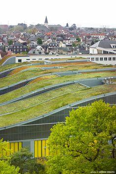 Rooftop green spaces. Marcel Sembat High School