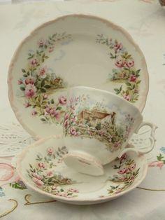 Cup And Saucer Set, Tea Cup Saucer, White Tea Cups, Tea Sets Vintage, Vintage Teacups, Antique Dishes, China Tea Sets, Bone China Tea Cups, Teapots And Cups